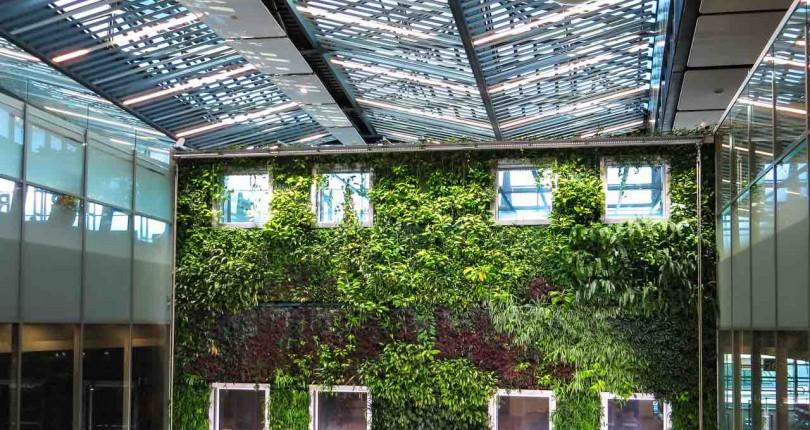 ¿Cómo crear un jardín vertical en casa?