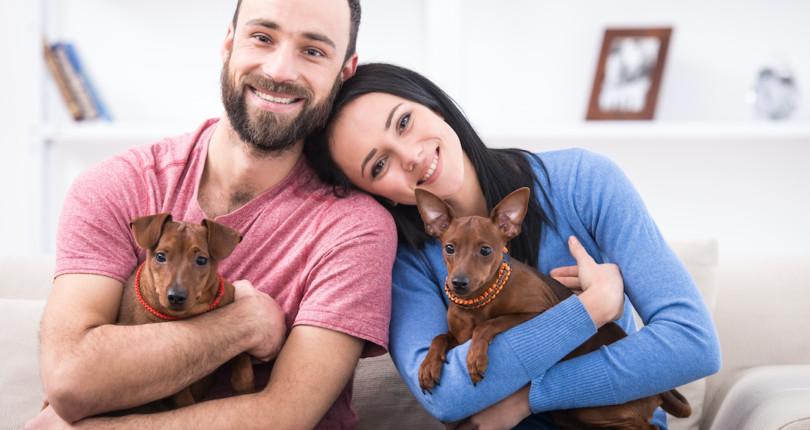 5 cosas que no debes hacer con tu mascota en un piso de alquiler