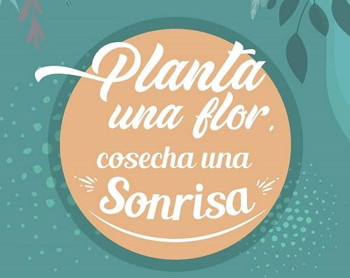 PlantaUnaSonrisaConDux
